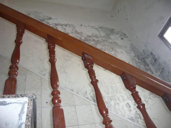 梯間牆面-壁癌施工前